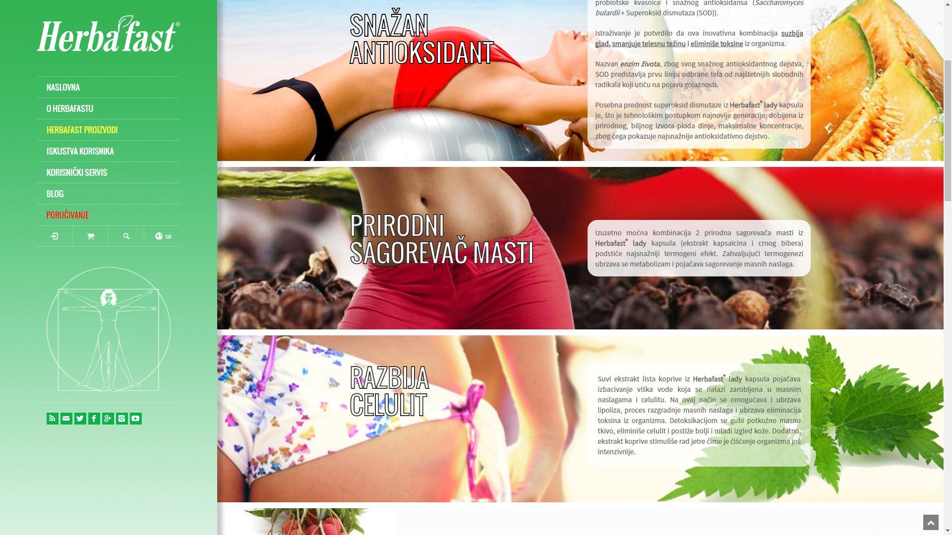 herbafast-Izrada-sajtova-sKa-ss3